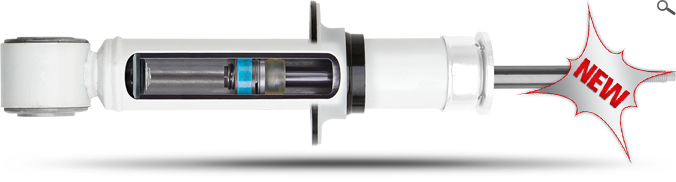 RS5000™X  Performance Strut